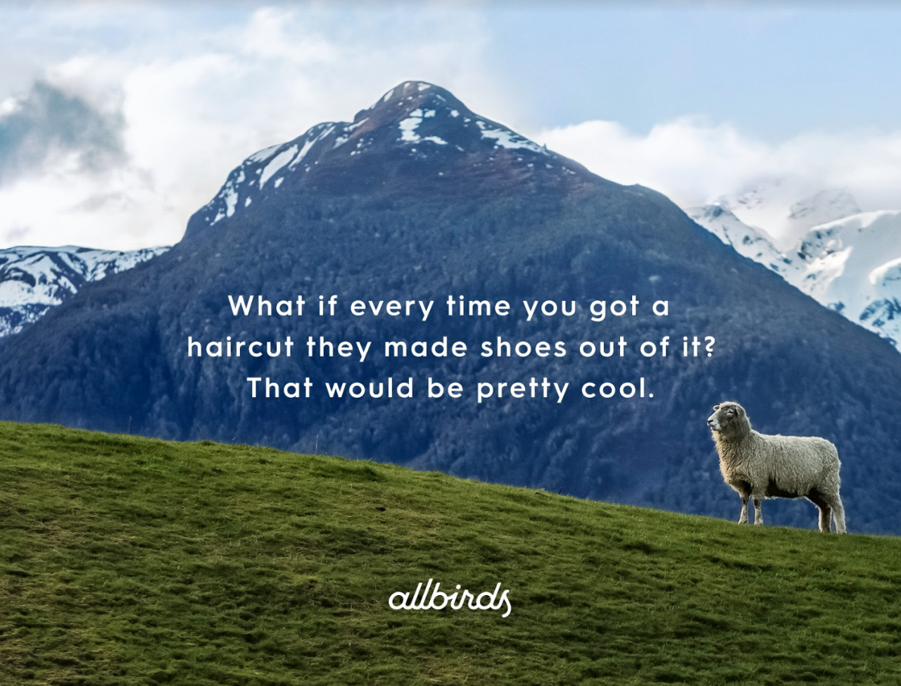 Allbirds: Meet Your Shoes by Anomaly